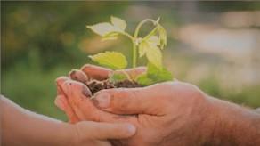 ecologico-y-sostenible.jpg